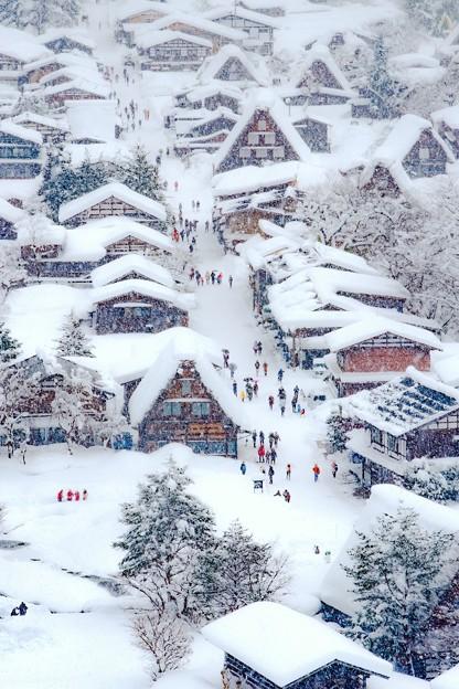 Photos: 白川郷