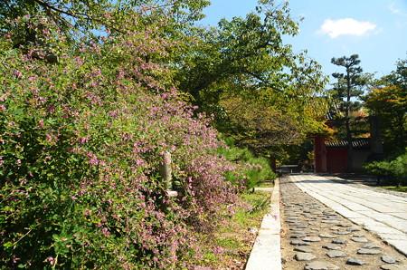総門前の  萩