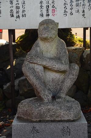 比叡山を  見つめる神猿(まさる)さん