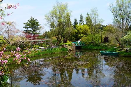 春のモネの池