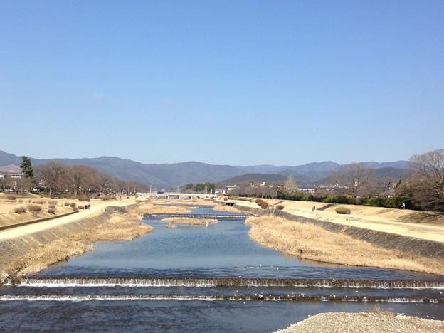 春めく賀茂川