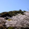 Photos: サントリー大山崎山荘美術館
