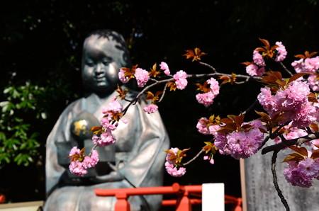 阿亀像の前の関山(カンザン)