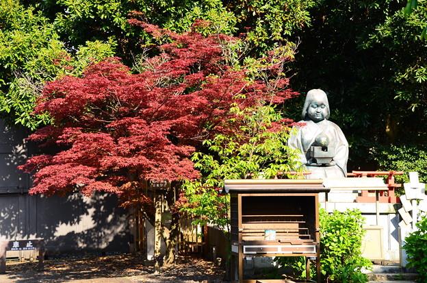 阿亀像と春紅葉