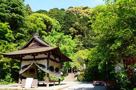 新緑の大豊神社