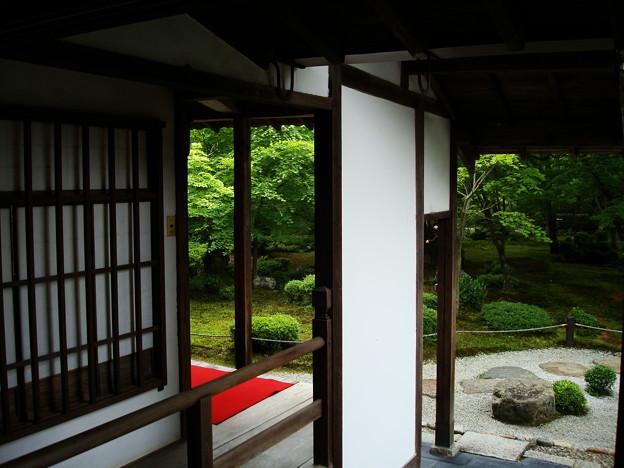 初夏の圓光寺