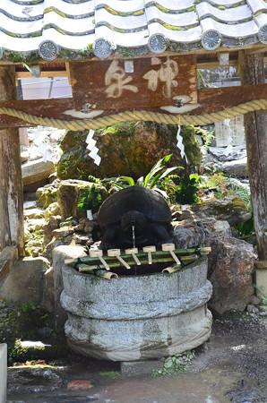 霊泉「亀の井」