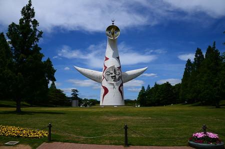 初夏の万博記念公園