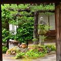 写真: 皐月咲く喜運院