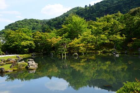 初夏の空を映す曹源池