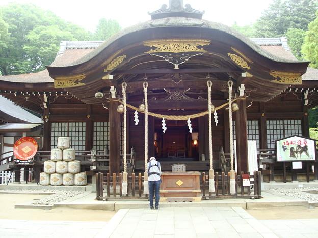 写真: 武田神社本殿
