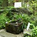 写真: 姫の井戸