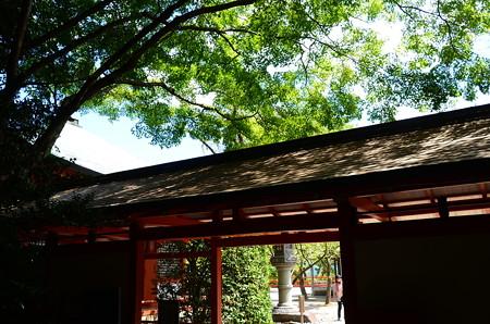 奥の院参道入口