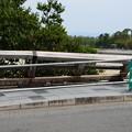 写真: 強風で倒れた渡月橋の欄干