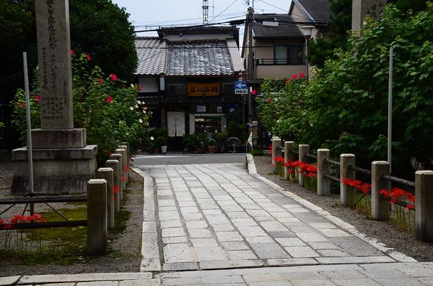 寺ノ内通りを向いて
