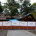 写真: 台風で倒壊した拝殿