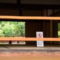 Photos: 方丈越しの風景