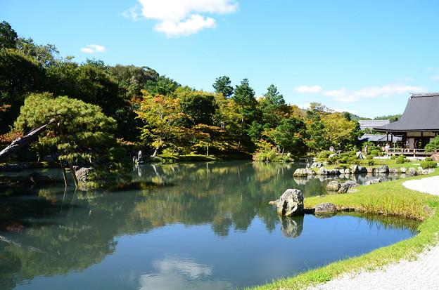 秋空の下の曹源池