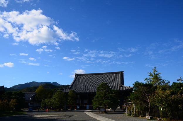 秋空の清涼寺