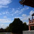 写真: 金堂と秋空