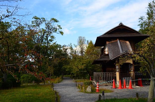 秋の傍花閣