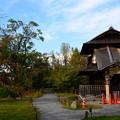 写真: 秋の傍花閣