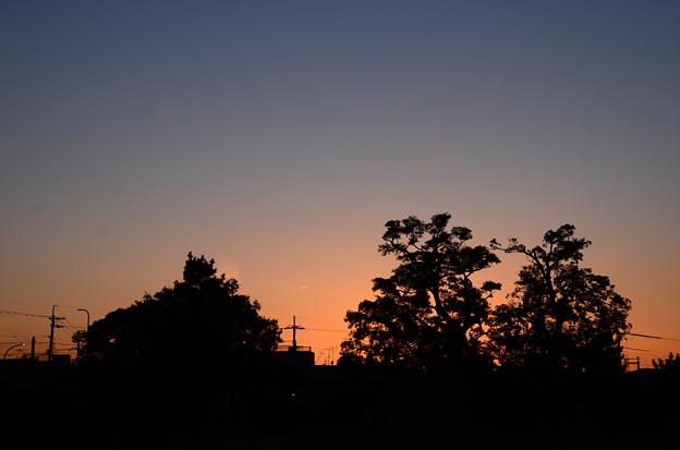 今日の夕景