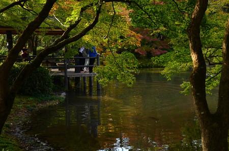 池脇の色づき
