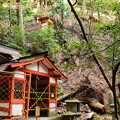 Photos: 魔王の瀧