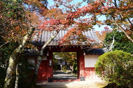吉野門と紅葉