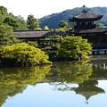 Photos: 秋空の泰平閣