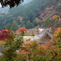 写真: 善峯寺の紅葉景色