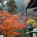 写真: 本堂横の紅葉