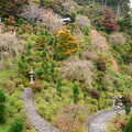 Photos: 白山 桜あじさい苑