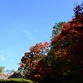 Photos: 紅葉と嘯月楼