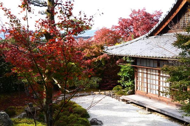金福寺の秋