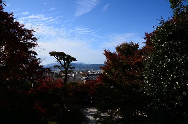 秋空の金福寺