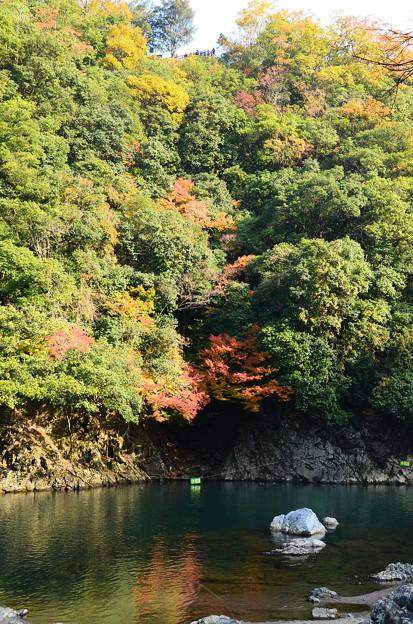 嵐山公園展望所