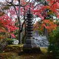 石塔を包む紅葉