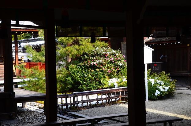 Photos: 三井社
