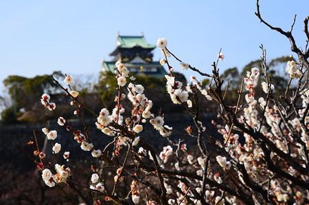 梅の花に浮かぶ天守閣