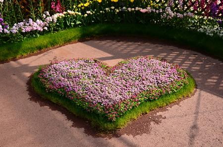 花咲くハート
