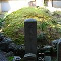 Photos: 紫式部墓所