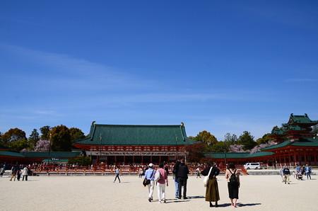 桜の平安神宮