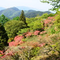 Photos: つつじヶ丘の眺望