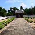Photos: 開山堂前の蓮