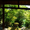 Photos: 中和園