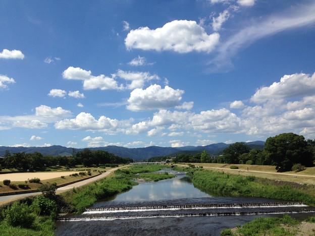 夏空の賀茂川