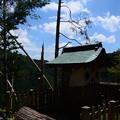 Photos: ケーブル山頂駅脇