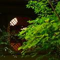 Photos: 吉野窓